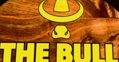 The-Bull-Head-Delph