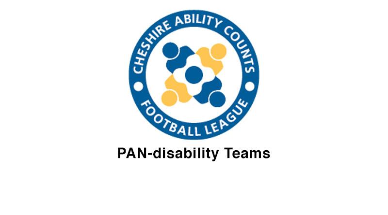 _PAN-disability-Teams