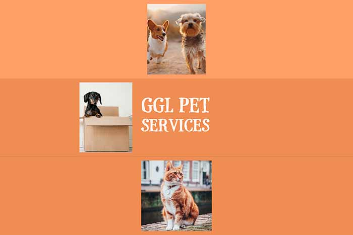 g-g-l-pet-services-saddleworth