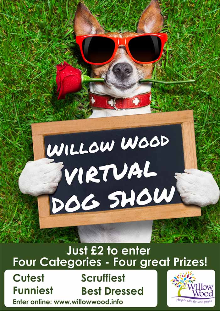willow-wood-virtual-dog-show